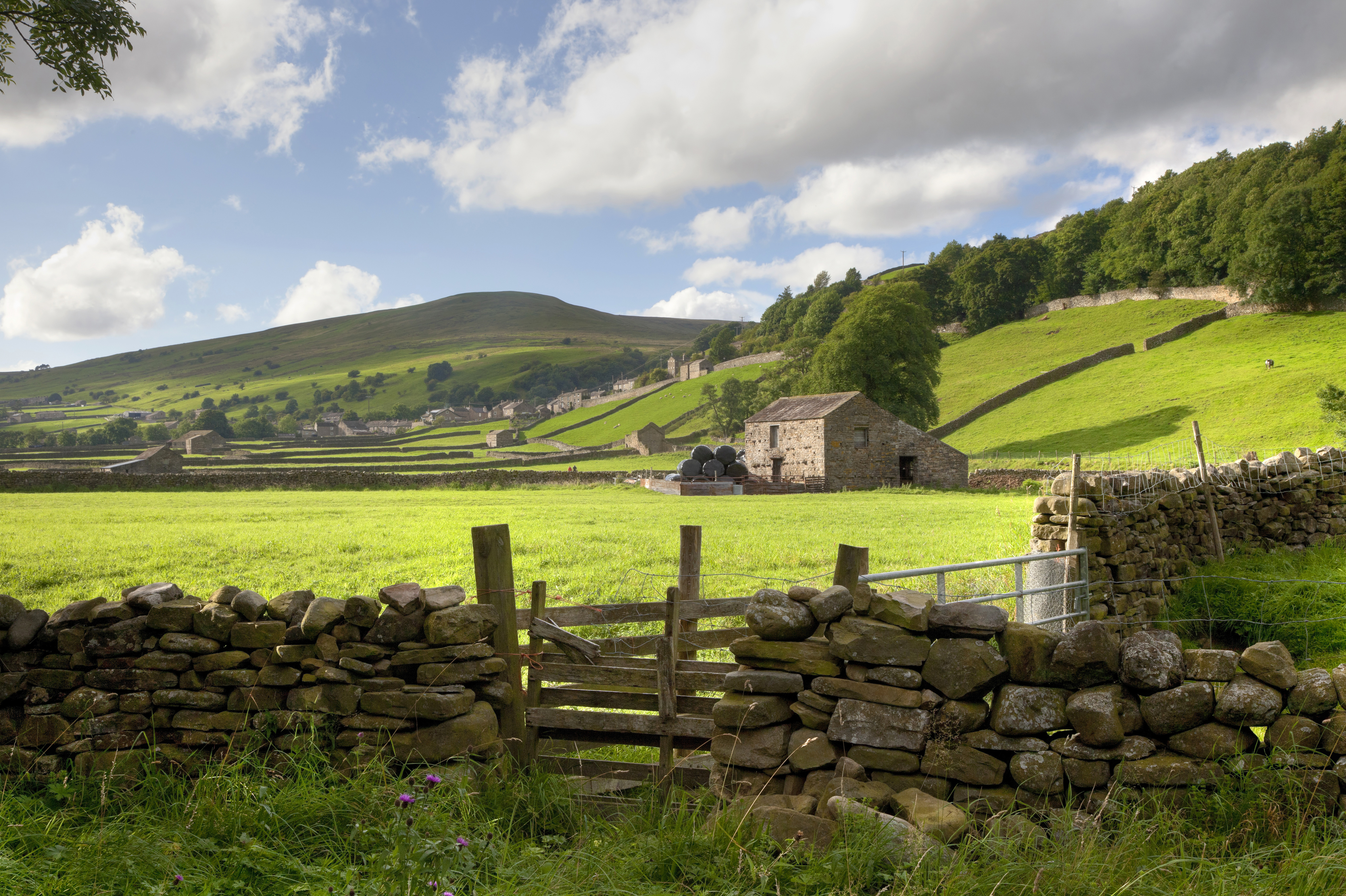 Overseas visitors flock to Yorkshire